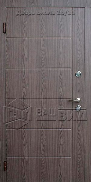 Дверь Виола 860*2040 (входная с улицы)