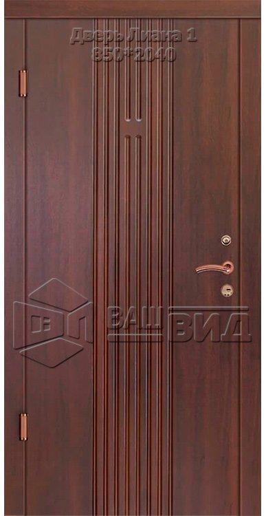 Двери Лиана 1 850*2040 (входные квартира) 5