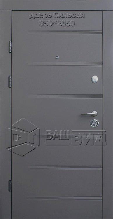 Двери Сильвия 850*2050 (входные квартира) 5