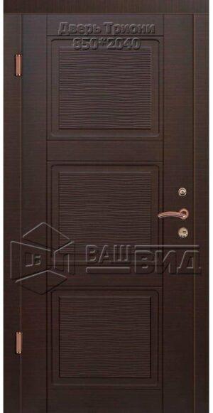 Двери Триони 850*2040 (входные квартира)