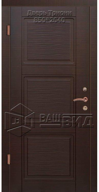 Двери Триони 850*2040 (входные квартира) 5