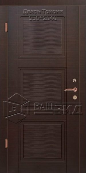 Двери Триони 950*2040 (входные квартира)